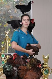 National Avian Champian © Dianne Yudelson