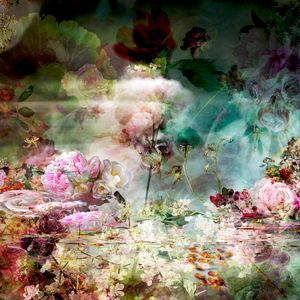 Pink Storm 2 - Tropisme (pour J. D.)