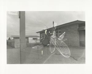 """""""Traceryscape - NZ310"""", painting on gelatin-silver print, 40x50cm, from the series Traceryscape © Aki Lumi"""