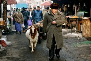 Western Series (China) No.8         (Sheep trader )