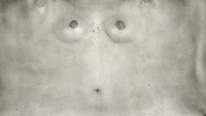 Torso Series by © June Yong Lee