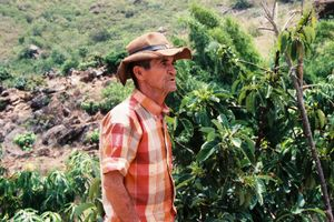 El Tio Noe, the man with the greenest  thumb in the valley.