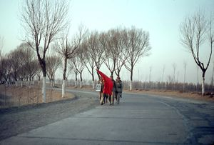 "The ""long walks"" of the red guards on the road from Tianjin to Pekin. © Solange Brand"