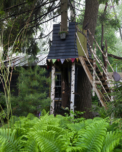 Tree Shed, Toronto Islands