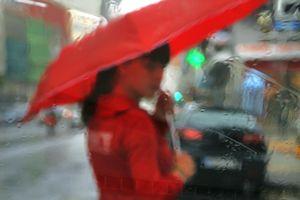Umbrellas #0744