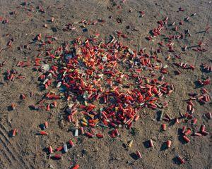 Shells, Madison County