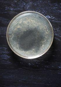 Petri Nebula 268.6