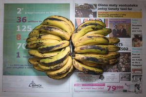 Bananas. Antananarivo, Madagascar. September 2011. 127.37 Malagasy Ariary (0.64 usd, 0.51 euros)