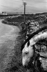 Ireland, 1972. © Josef Koudelka / Magnum Photos