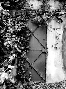 Doors 8