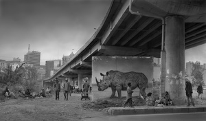 UNDERPASS WITH RHINO & EGRET, 2015