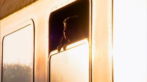 Barcs, Hungary. End of september, 2015. A young Afghan boy looks out from the window of the special train that should take him from the Croatian - Hungarian border to Austria. He watches the day's last rays of sun that - as the train is being loaded - is setting west, towards the destination of his long journey.