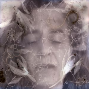 Dreaming Ophelia