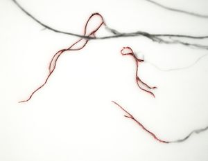 Detail from: My Grandmother's Roots (turnips), 2012                                Carved line work and oil pigment in encaustic                                                    © Christa Bowden