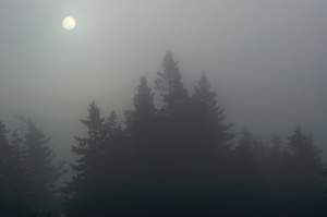 Filtered Sun