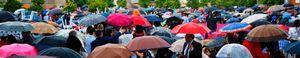 Umbrellas at Dusk