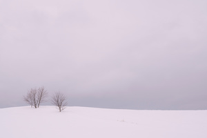 Winter Horizon in the Vicinity -05
