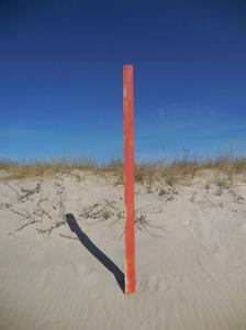 Orange Post