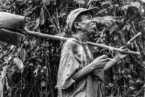the Informal Miner (Luofu)
