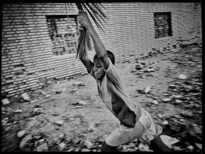 An arab kids are swinging on a palm in a garbagful alley at Gavmish Abad.