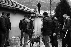 At the end of a dogfight in Kruja, Albania © Enri Canaj