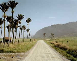 Kohaihai Road, North Beach, West Coast, 10:30am, 9th February, 2004. © Derek Henderson