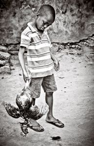 killing a hen. Obi seven years.