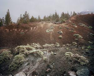 El Teide, view #05