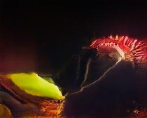 Venus Flytrap (Corpus: American Predators) Adversarially Evolved Hallucination, 2017