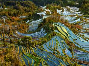 Terraces of Pastel