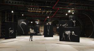 Exhibition at PhotoVisa  Krasnodar - Russia   © Patrick Gries
