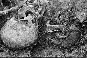 Two skulls lay twisted as they fell into a grave. The REMI report prepared by Archbishop Gerardi in 1998, (for which he was subsequently murdered) found that over 90 percent of the human rights violations committed during the war were at the hands of the Guatemalan Army, and almost all against defenseless civilians. © Victor Blue, 2004