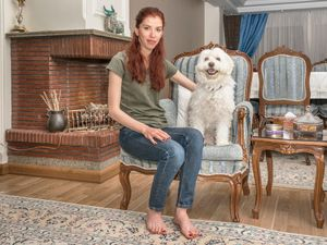 Dog Owners (I)