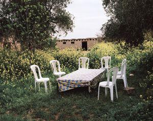 Kurdish spring. Romelan, Syria.