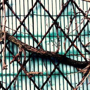 Branches vs Metal
