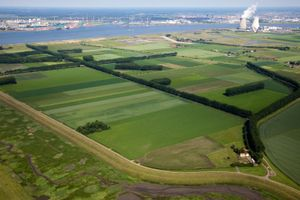 "Polder to be 'de-poldered'. From the book ""The Low Land"" © Siebe Swart"