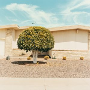 Front yard 4, from the series Sun City © Peter Granser