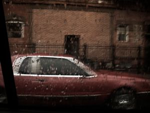 "Book excerpt, ""BROOKLYN BUZZ"" © Gaia Light. Published by Damiani, 2012"