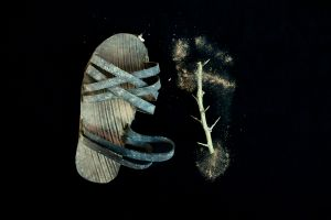 Sandal and Footprint with Thorn