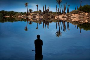 Fatnis al-Jazirah (Fantasy Island), 2014