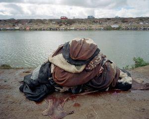 Washed Zebu Skins, Antananarivo, Madagascar