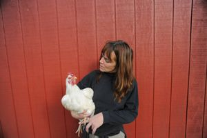 Susie and Lucille at Farm Sanctuary