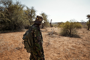 The Black Mambas: Wildlife