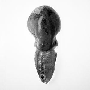 Synodontidae Octopodidae