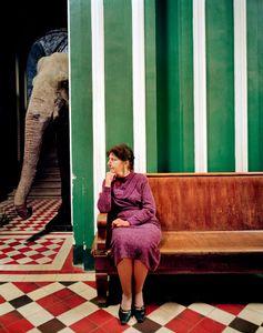 Elephant I, 2005
