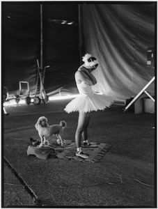 Ballerina And Her Poodle © Norma I. Quintana