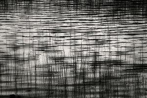 Upper Hadlock Pond 34, © Alan Henriksen