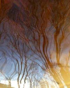 REFLECTING SKY 2 - Juried into the exhibit by Paula Tognarelli