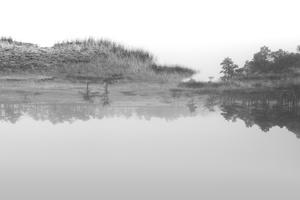 Soomaa - land of bogs X