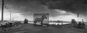 ROAD TO FACTORY WITH ZEBRA, 2014